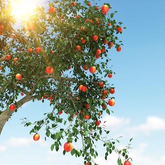 Apfelbaum und blauer himmel