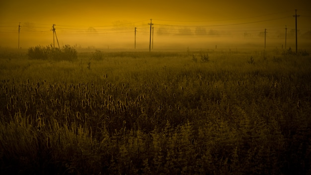 Apokalyptische felder landschaft