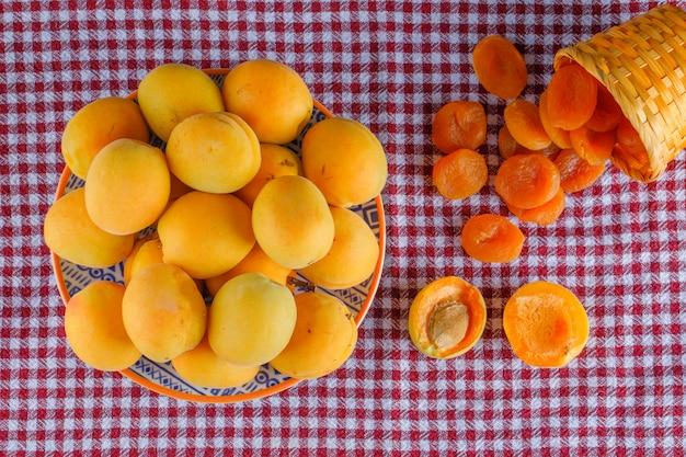 Aprikosen in einem teller mit getrockneten aprikosen lagen flach auf einem picknicktuch
