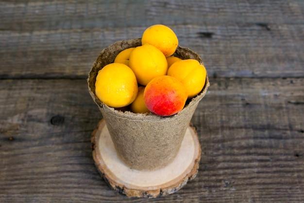 Aprikosen in einem topf