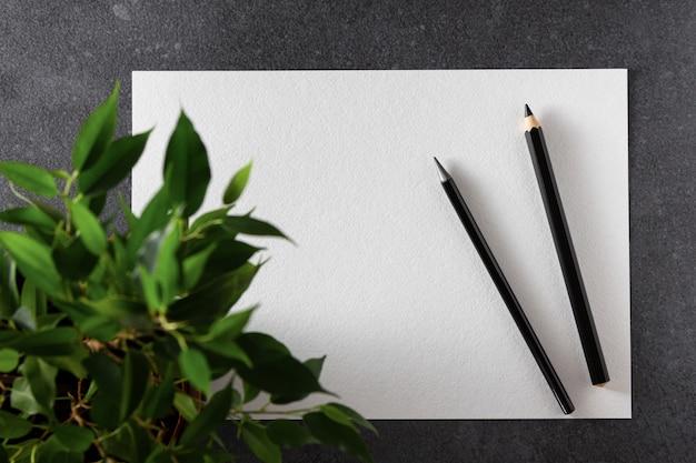 Aquarell a4 papier mit schwarzen stiften und pflanze auf schwarz. draufsicht.