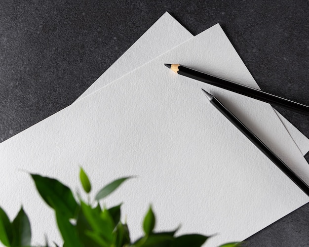 Aquarell a4 papier mit schwarzen stiften und pflanze auf schwarz.