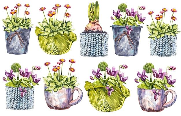 Aquarell-frühlingsblumen im blumentopf