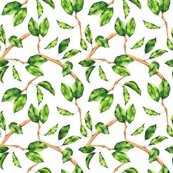 Aquarell grüne blätter und zweige nahtlose muster hell botanischer wiederholungsdruck