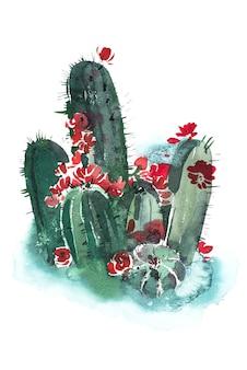 Aquarell hand gezeichnete stachelige kaktusblüte blume.