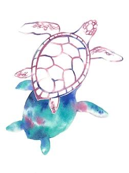 Aquarell handgemalte schildkröte