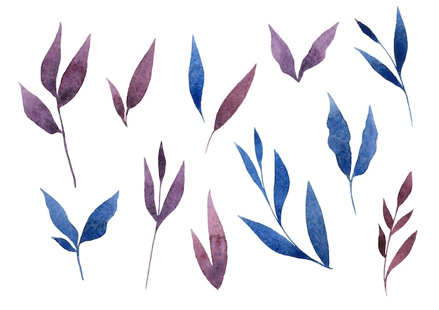 Aquarell handgezeichnete blaue und violette blätter isoliert auf weißem hintergrund zwölf blatt cliparts