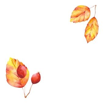 Aquarell herbst rahmengestaltungselement. orangenblätter und rote beeren kopieren raum. leeres leerzeichen, rahmen, rahmen mit natürlichen elementen des herbstes.
