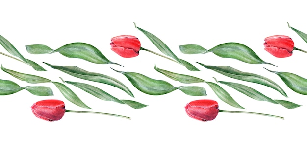 Aquarell nahtlose grenze mit eleganten roten tulpen. knospen, blüten und blätter