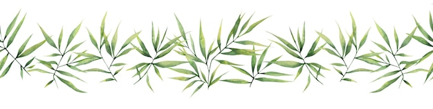 Aquarell nahtlose grenze mit grünen zweigen und bambusblättern auf weißem hintergrund