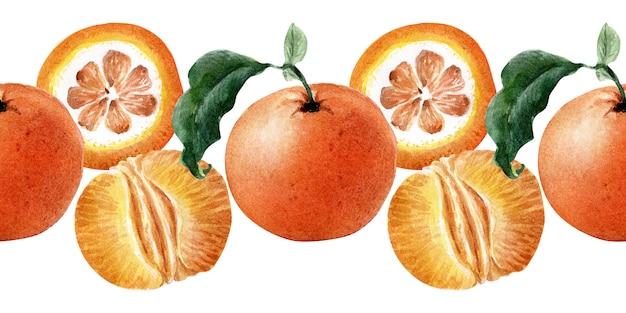 Aquarell nahtlose grenze von früchten, zweigen und mandarinenscheiben