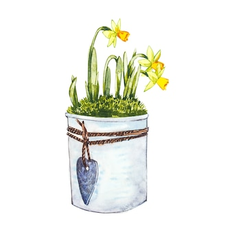 Aquarell-narzissenblüten im blumentopf. hand zeichnen aquarellillustration