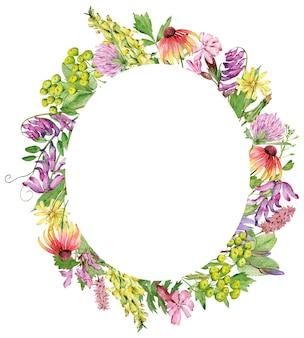 Aquarell ovaler rahmen mit handgezeichneten kräutern und wildblumen