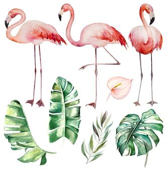 Aquarell rosa flamingos und tropische grüne blätter isoliert illustration für hochzeit stationär, grüße, tapeten, mode, poster
