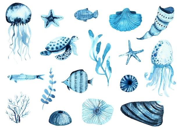 Aquarell-satz von indigo-fischen, muscheln, korallen und quallen des meereslebens.