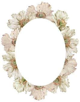 Aquarell schöner beige mohnblumenrahmen auf weißem hintergrund