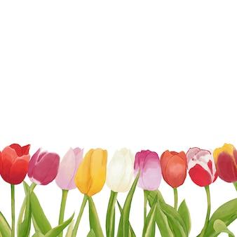 Aquarell tulpen hintergrund
