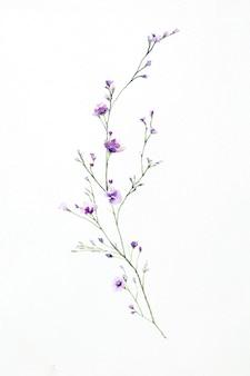 Aquarell von blumenstraußblumen lokalisiert auf weiß