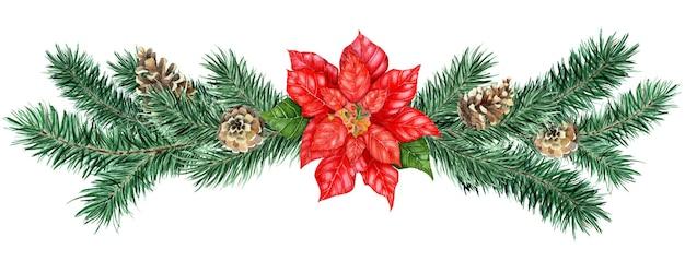 Aquarell weihnachtsdekor weihnachtsstern kiefernzapfen aquarell weihnachten kiefer