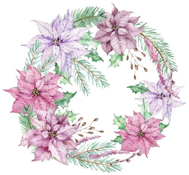 Aquarell-weihnachtskreisstrauß mit rosa und violetten weihnachtssternblumen und tannenzweigen. neujahrswinterkarte lokalisiert auf dem weißen hintergrund.