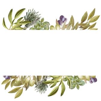Aquarell-zeichnungsrahmen mit blättern, früchten und olivenöl. öl und aromatische kräuter
