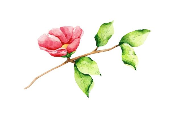 Aquarellbaumzweig mit roter blume und grünen blättern. botanische clipart. wildrose-abbildung.