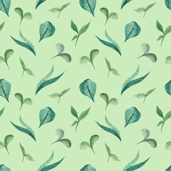 Aquarellblumenmuster mit jungen grünen grashalmen und jungen grünen sprossen Premium Fotos
