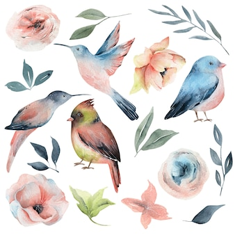 Aquarellfrühlingsvögel und -blumen