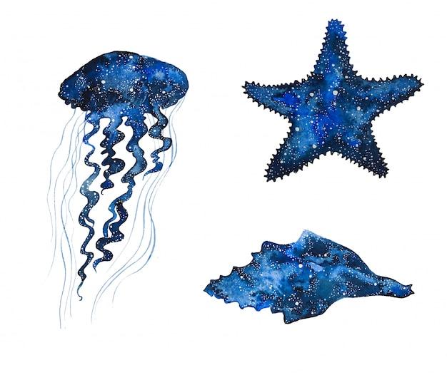 Aquarellgalaxieseetiere handgemalte quallen, seestern und muschel.