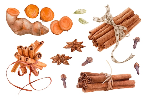 Aquarellgewürze, curcuma-wurzel, zimtstangen, anis, nelken, kardamom