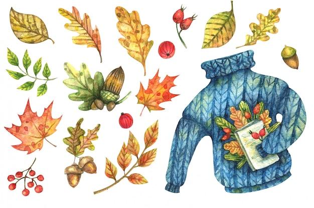 Aquarellherbstsatz von hellen blättern, blumen, eicheln, beeren und einem blauen, gestrickten, warmen pullover, der ein buch hält