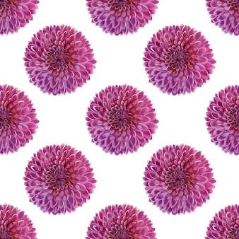 Aquarellhintergrund mit rosa dahlien