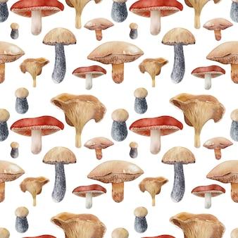 Aquarellhintergrund mit verschiedenen arten von pilzen