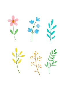 Aquarellillustrations-kunstdesign, satz bunte blumen des frühlinges und grünblätter im aquarell