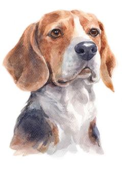 Aquarellmalerei des spürhunds