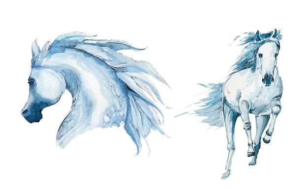 Aquarellpferde-entwurfssatz lokalisiert auf einem weißen hintergrund.