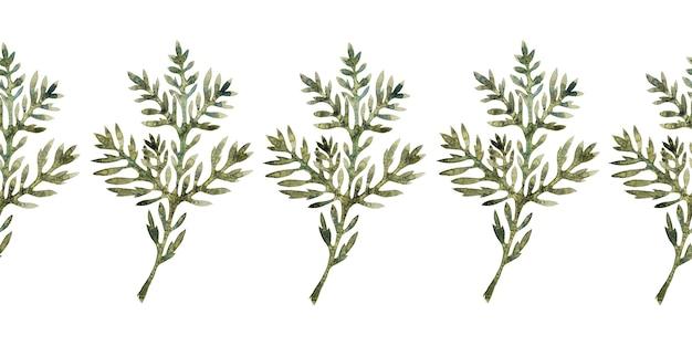Aquarellränder mit stilisierter wermutpflanze