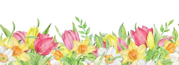 Aquarellrand der rosa und gelben tulpen und narzissen