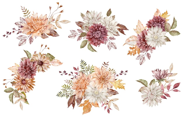 Aquarellsammlung herbstblumensträuße. purpurrote, weiße und orangefarbene astern und chrysanthemen und herbstblätter isoliert auf weißem hintergrund.