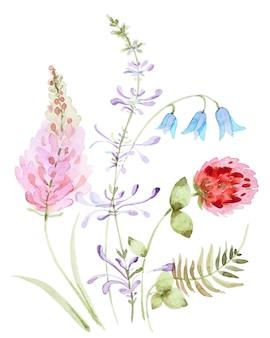 Aquarellsträuße von klee- und glockenwildblumen. blumenkomposition lokalisiert auf einem weißen hintergrund.