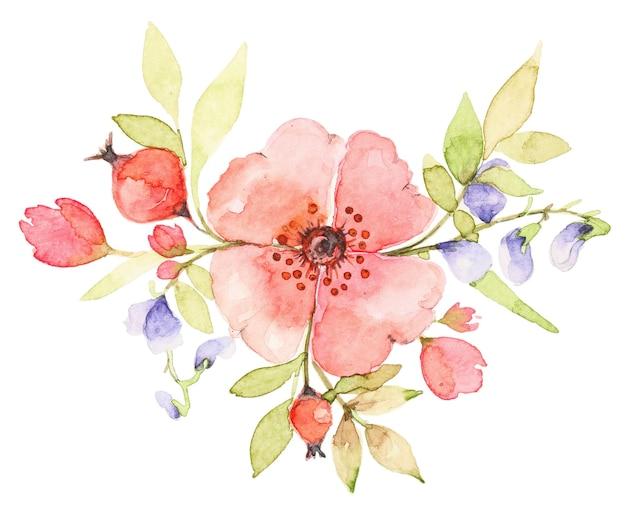 Aquarellstrauß von wildblumen. rosa rosenhundeblume mit beeren. botanische frühlingszusammensetzung