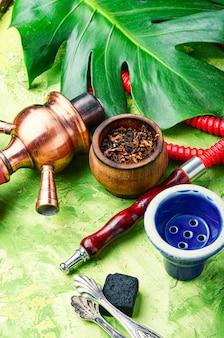 Arabien shisha mit tabak