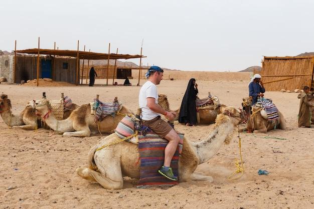 Arabischer junge rollt touristen auf einem kamel.