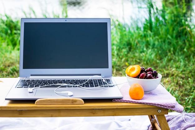 Arbeiten sie an einem laptop an einem picknick in der natur - neben einer schüssel kirschen und aprikosen