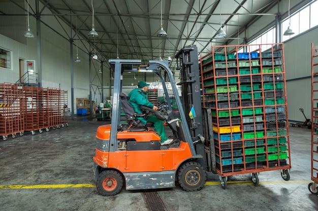 Arbeiterfahrer eines gabelstaplerladers im lager transportiert kisten mit kirsche.