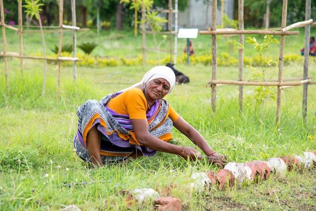 Arbeiterinnen schneiden unerwünschtes gras vom gartenfeld