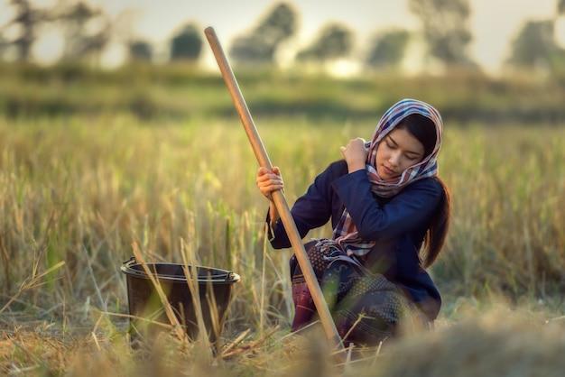 Arbeitnehmerin in der landwirtklage auf reisfeldern, thailand