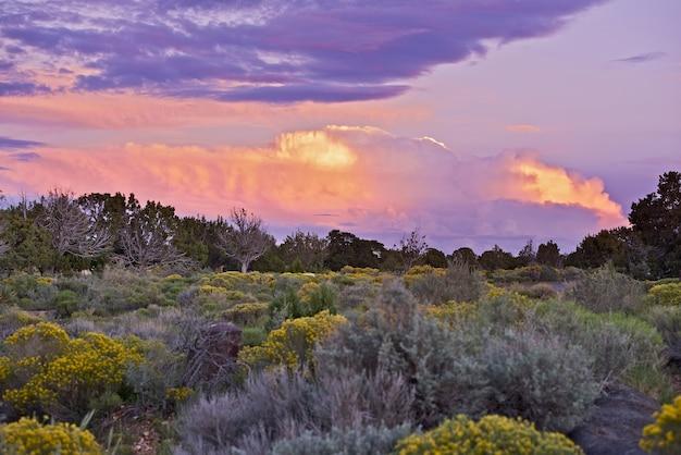 Arizona sonnenuntergang