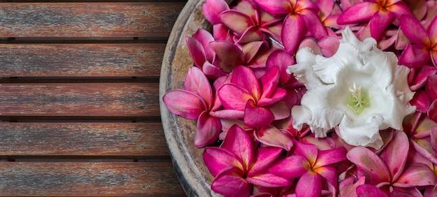 Aromatheraphie-frangipani-blume auf einer schüssel