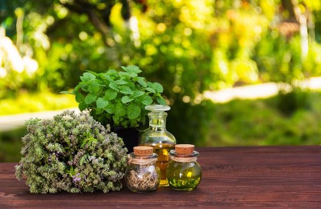 Aromatische kräuter und ätherische öle. naturkosmetik. natürliche medikamente. pfefferminze und duftender thymian